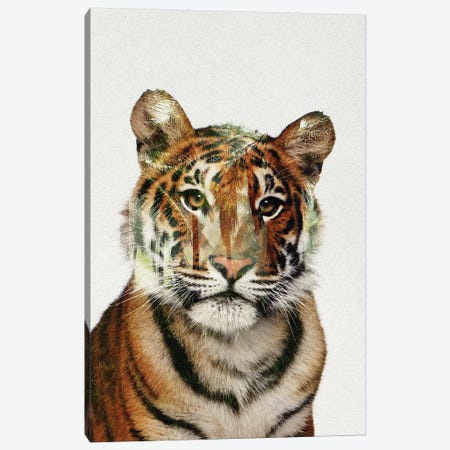 Tiger Canvas Print #ALE241} by Andreas Lie Canvas Print