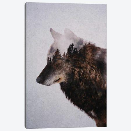 Wolf IX Canvas Print #ALE243} by Andreas Lie Canvas Art Print