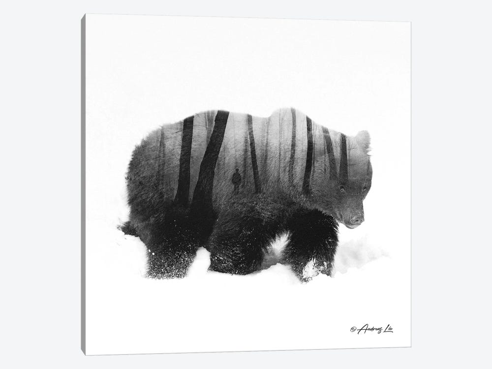 Black & White Bear I by Andreas Lie 1-piece Canvas Wall Art