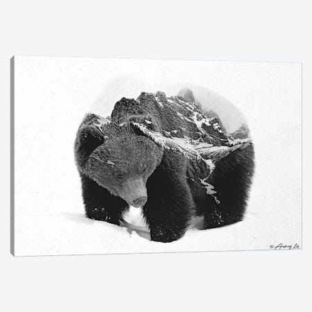Black & White Bear III Canvas Print #ALE252} by Andreas Lie Canvas Art