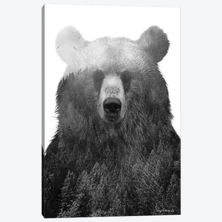 Black & White Bear V Canvas Print #ALE254} by Andreas Lie Art Print