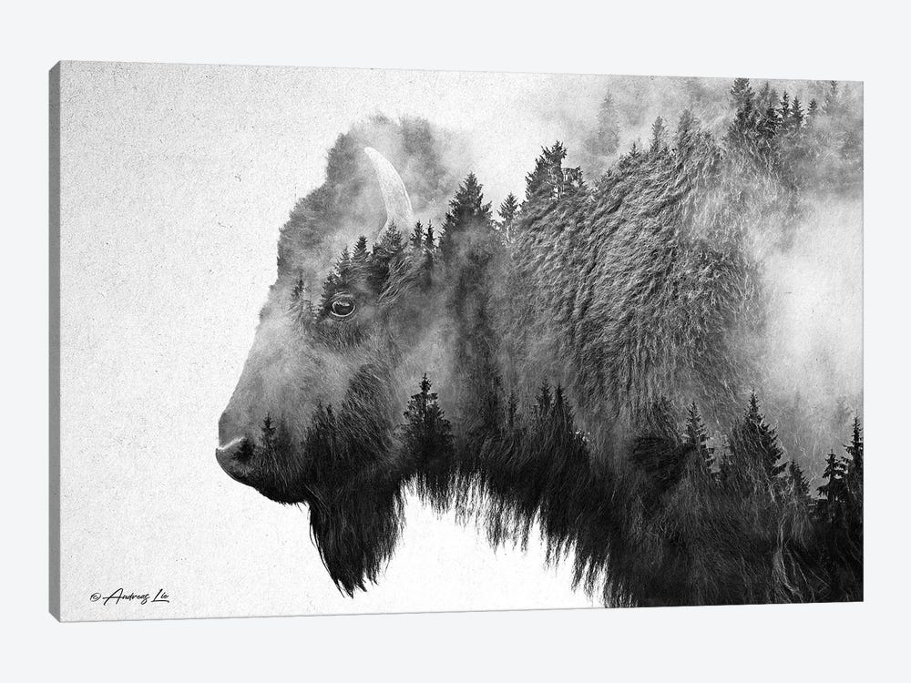 Black & White Bison by Andreas Lie 1-piece Canvas Art