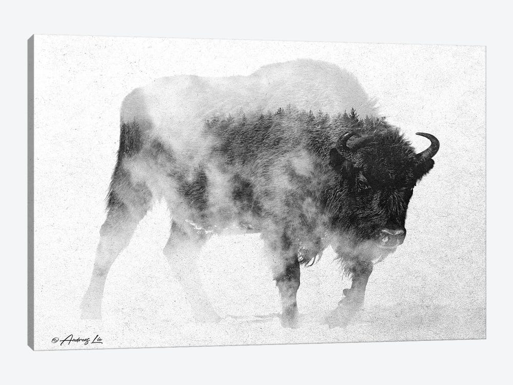 Black & White Buffalo II 1-piece Art Print