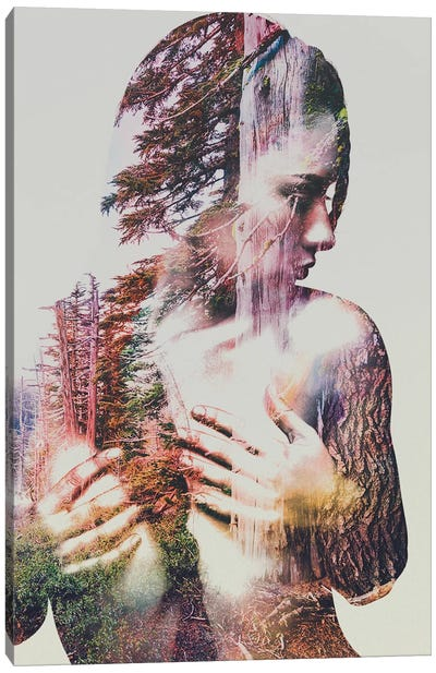 Wilderness Heart III Canvas Print #ALE25