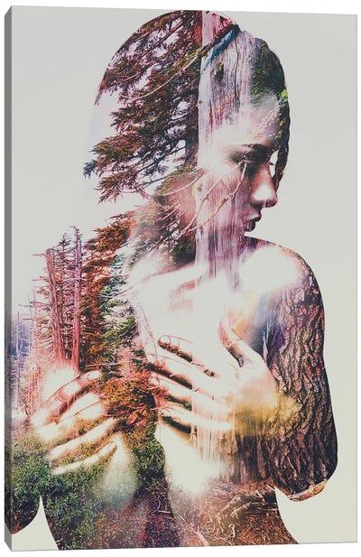 Wilderness Heart III Canvas Art Print