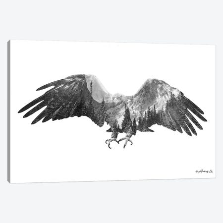 Black & White Eagle 3-Piece Canvas #ALE261} by Andreas Lie Art Print