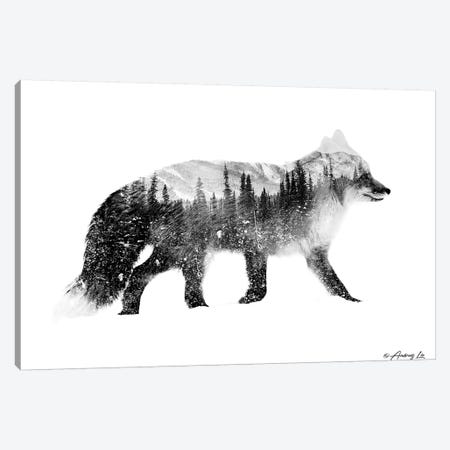 Black & White Fox Canvas Print #ALE264} by Andreas Lie Canvas Artwork