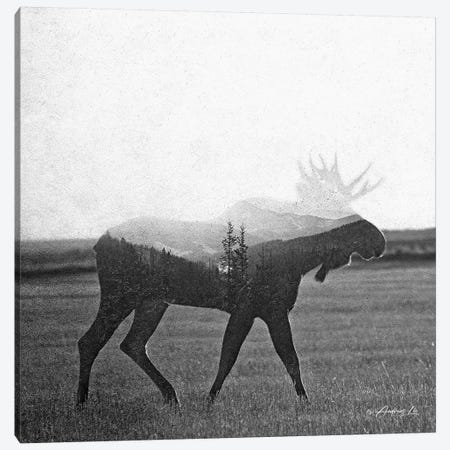 Black & White Moose Canvas Print #ALE265} by Andreas Lie Canvas Art