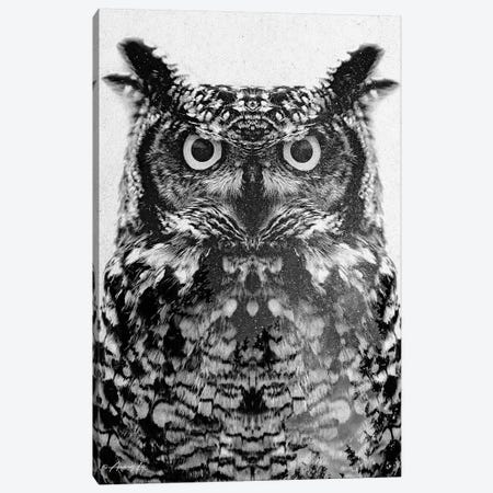 Black & White Owl III Canvas Print #ALE268} by Andreas Lie Canvas Art Print
