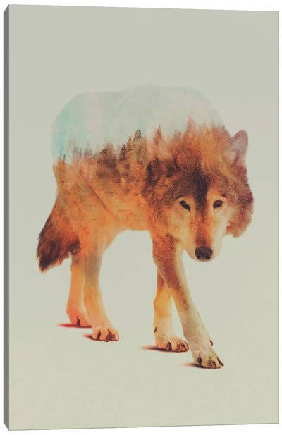 Wolf in the Woods II Canvas Art Print