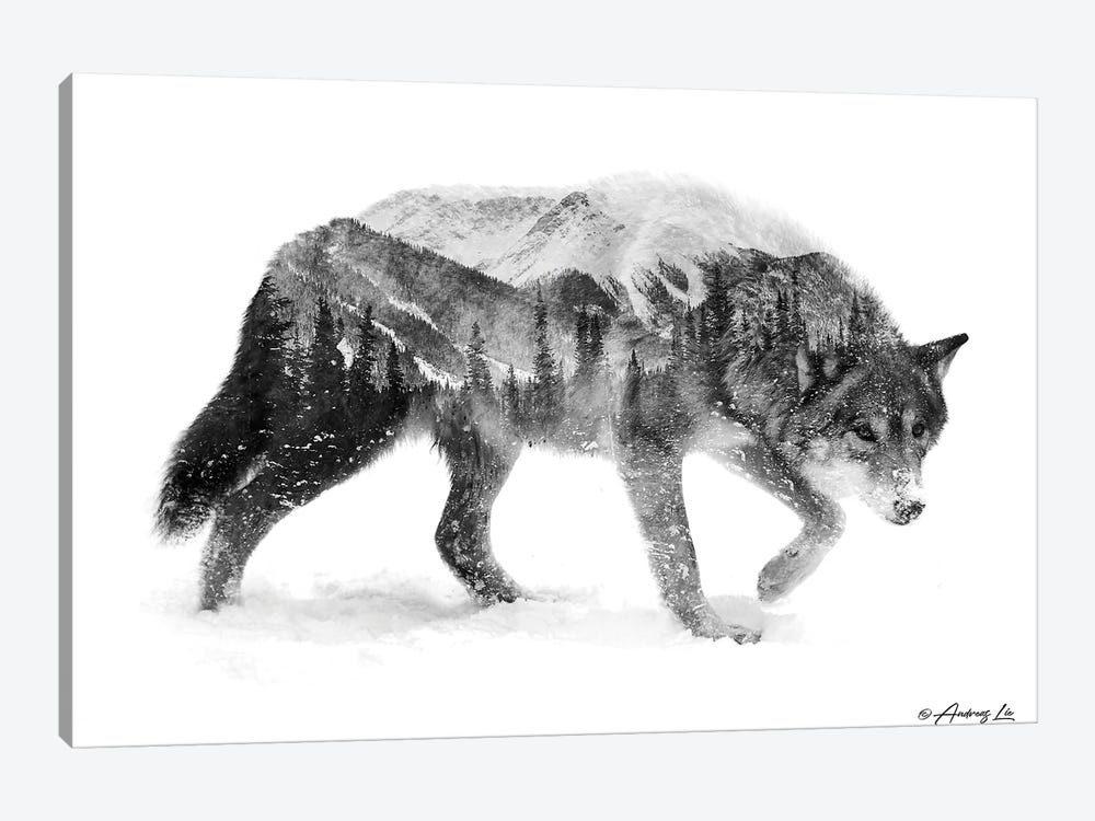 Black & White Wolf I by Andreas Lie 1-piece Canvas Print