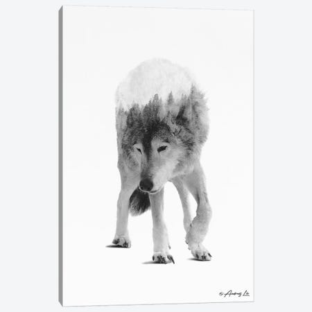 Black & White Wolf III Canvas Print #ALE275} by Andreas Lie Art Print