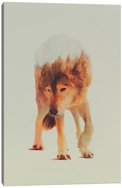 Wolf in the Woods I Canvas Art Print