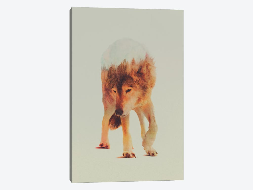 Wolf in the Woods I by Andreas Lie 1-piece Canvas Wall Art