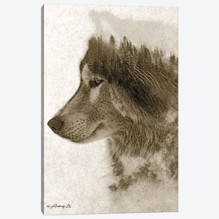 Wolf Canvas Print #ALE286} by Andreas Lie Canvas Art
