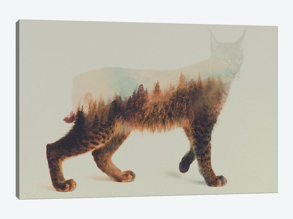 Lynx I by Andreas Lie 1-piece Canvas Wall Art