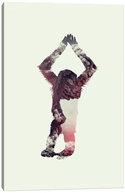 Ape Canvas Art Print