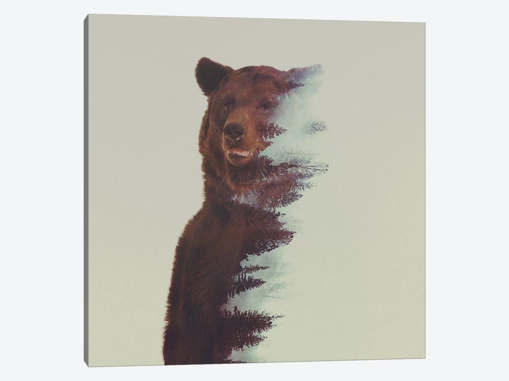 Bear in the Woods by Andreas Lie 1-piece Art Print