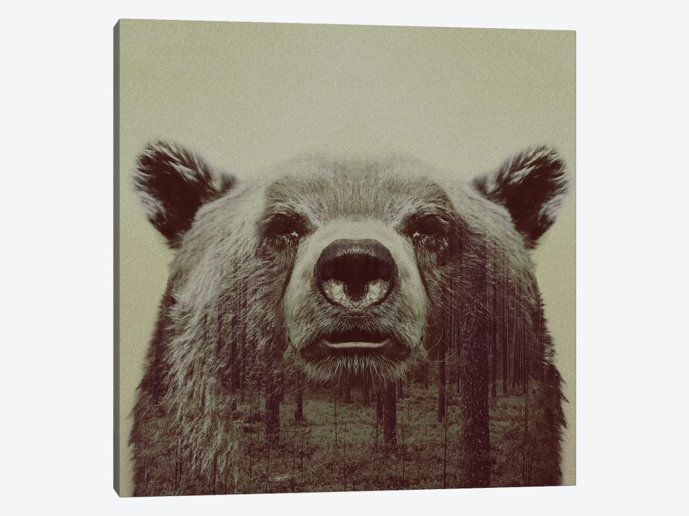 Bear II by Andreas Lie 1-piece Art Print