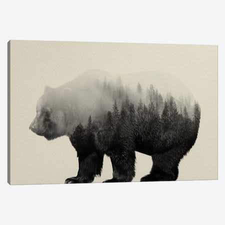 Bear in the Mist Canvas Print #ALE34} by Andreas Lie Canvas Art