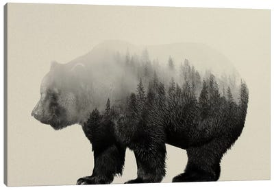 Bear in the Mist Canvas Art Print