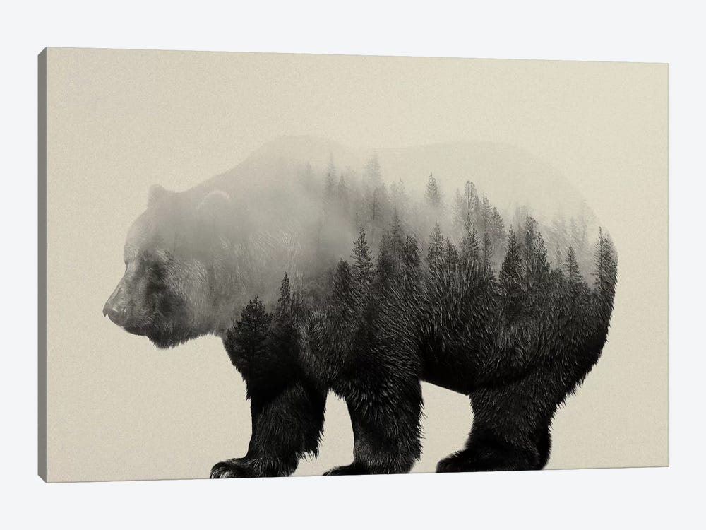 Bear in the Mist by Andreas Lie 1-piece Canvas Art