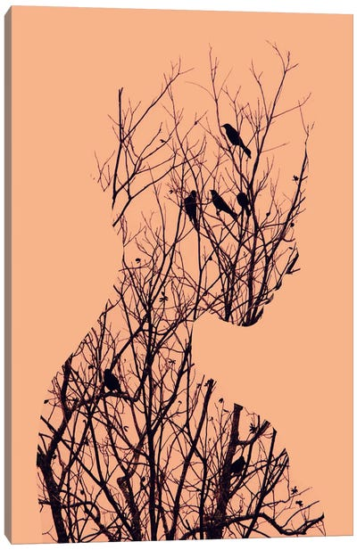 Birds Canvas Print #ALE36