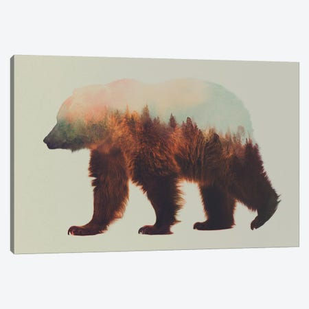Bjorn Canvas Print #ALE38} by Andreas Lie Canvas Print