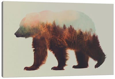 Bjorn Canvas Art Print