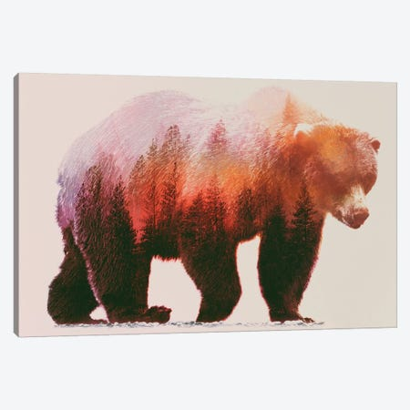 Brown Bear Canvas Print #ALE39} by Andreas Lie Canvas Art Print