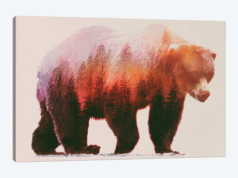 Brown Bear by Andreas Lie 1-piece Art Print