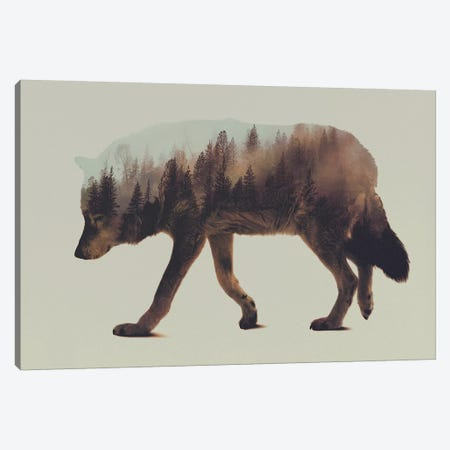Wolf I Canvas Print #ALE3} by Andreas Lie Art Print