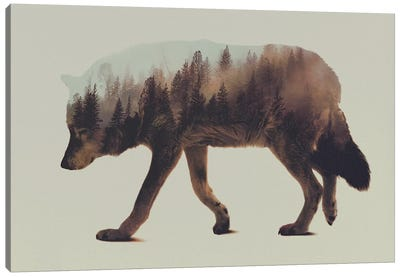 Wolf I Canvas Print #ALE3