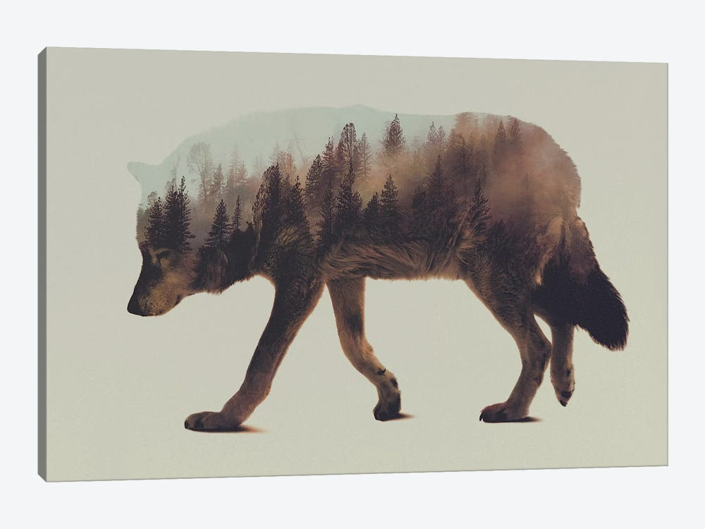 Wolf I by Andreas Lie 1-piece Art Print
