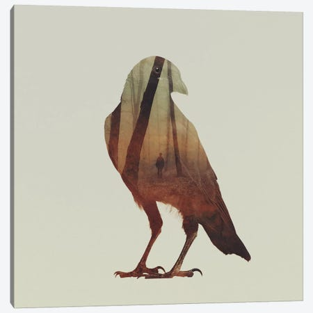 Crow Canvas Print #ALE42} by Andreas Lie Canvas Wall Art