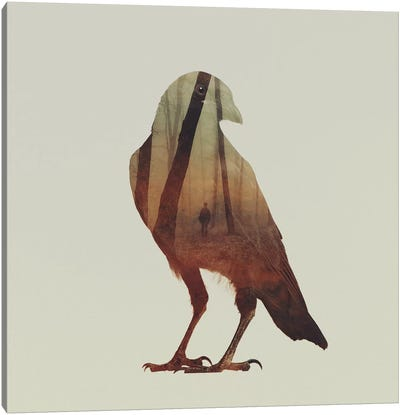 Crow Canvas Print #ALE42