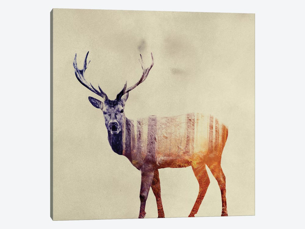 Deer I by Andreas Lie 1-piece Art Print