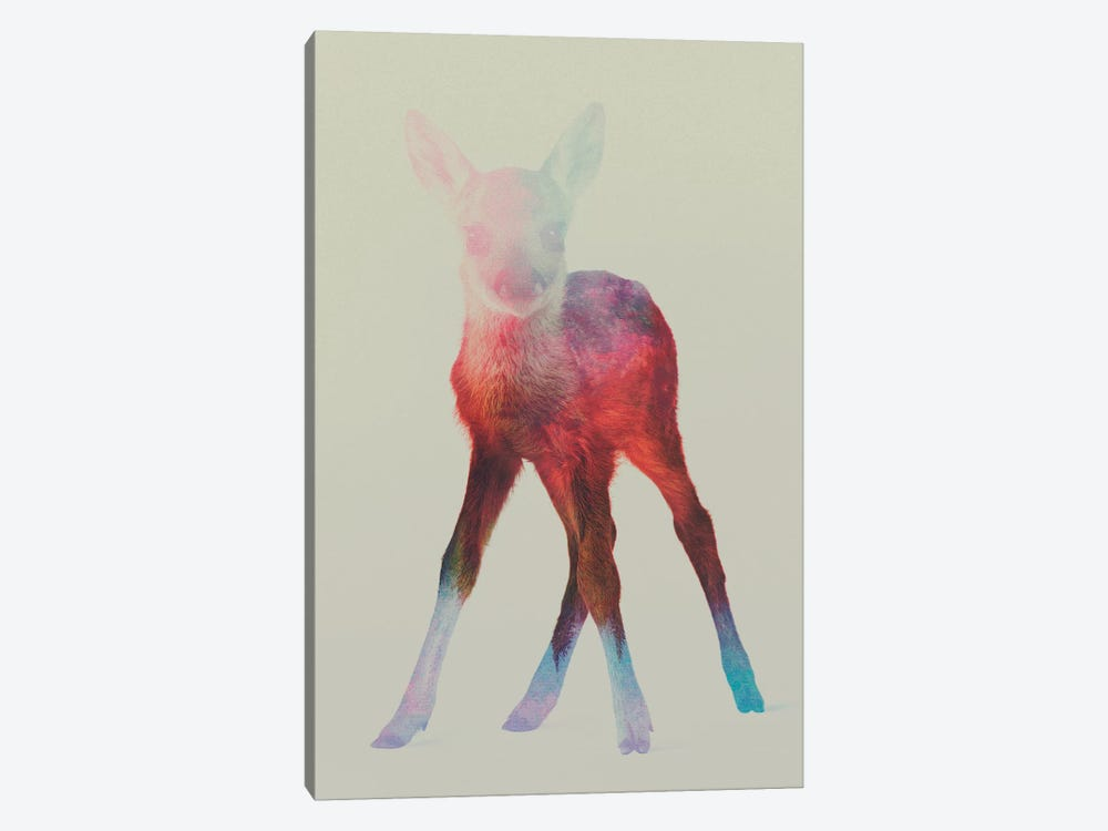 Fawn I by Andreas Lie 1-piece Canvas Art