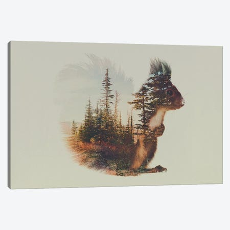 Squirrel Canvas Print #ALE51} by Andreas Lie Art Print