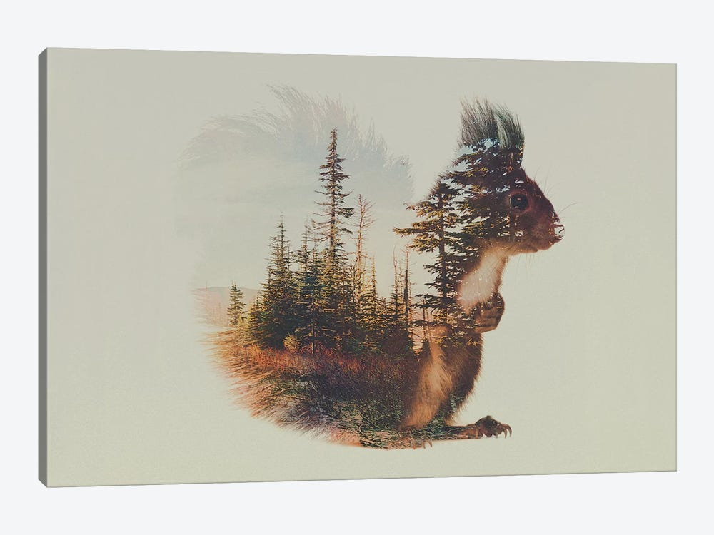 Squirrel 1-piece Canvas Print