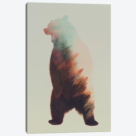 Roaring Bear Canvas Print #ALE63} by Andreas Lie Canvas Art