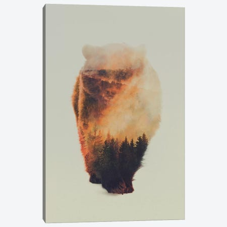 Approaching Bear Canvas Print #ALE68} by Andreas Lie Canvas Wall Art
