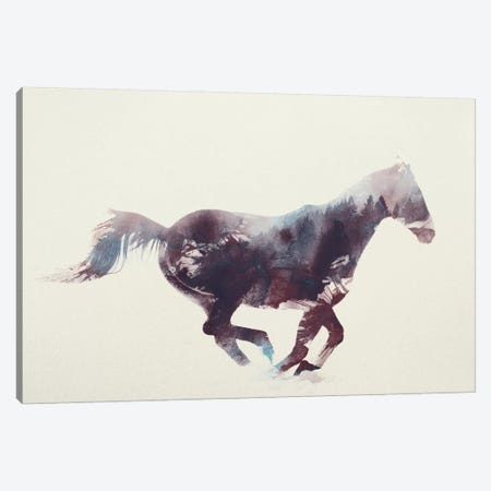 Horse I Canvas Print #ALE6} by Andreas Lie Canvas Wall Art