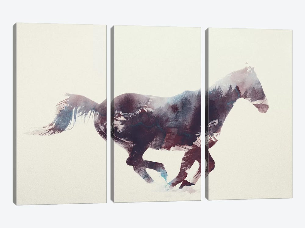 Horse I by Andreas Lie 3-piece Canvas Art