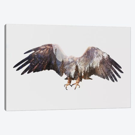 Arctic Eagle Canvas Print #ALE81} by Andreas Lie Canvas Wall Art