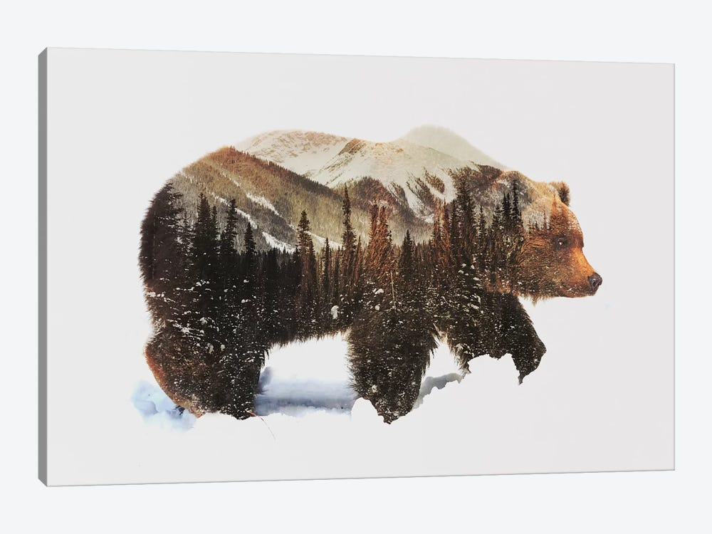 Arctic Grizzly Bear by Andreas Lie 1-piece Canvas Art Print