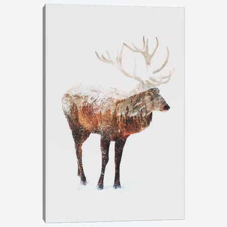 Deer V Canvas Print #ALE84} by Andreas Lie Canvas Print