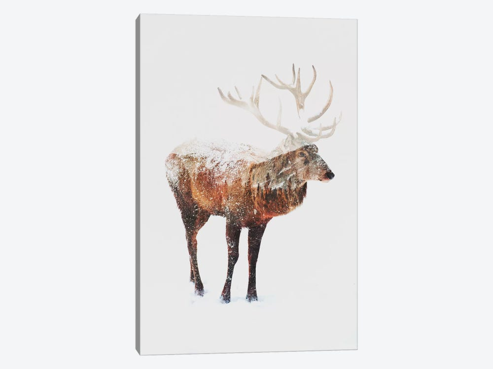 Deer V by Andreas Lie 1-piece Canvas Art Print