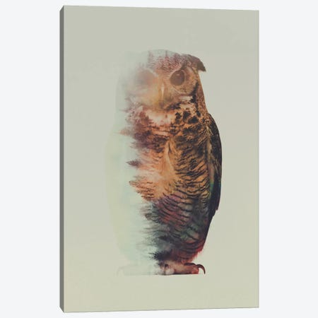 Owl Canvas Print #ALE87} by Andreas Lie Canvas Art Print