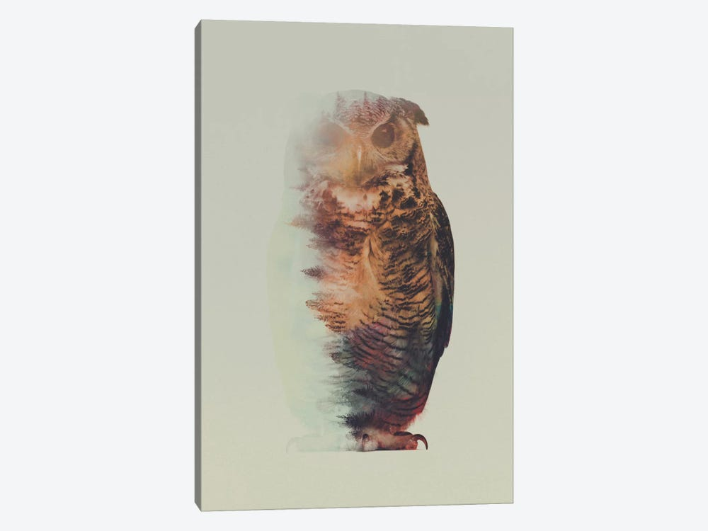 Owl by Andreas Lie 1-piece Canvas Art